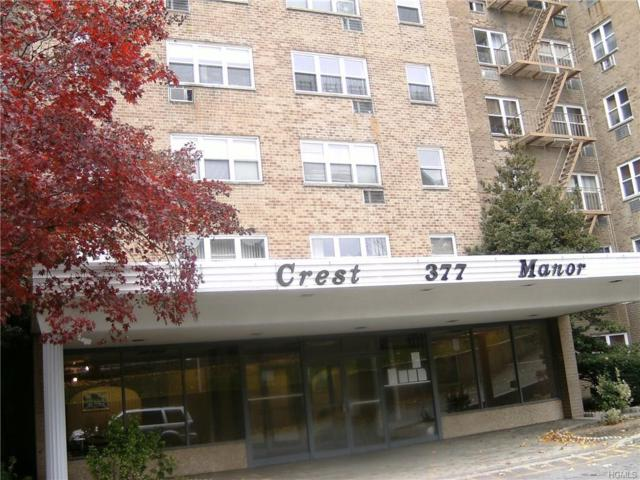 377 N Broadway #517, Yonkers, NY 10701 (MLS #4747752) :: Mark Boyland Real Estate Team
