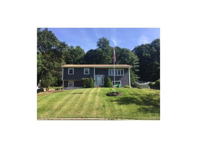152 Meadow Lark Road, Montgomery, NY 12549 (MLS #4749162) :: William Raveis Baer & McIntosh