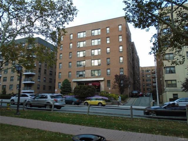 10 N Broadway 2J, White Plains, NY 10601 (MLS #4749473) :: Mark Boyland Real Estate Team