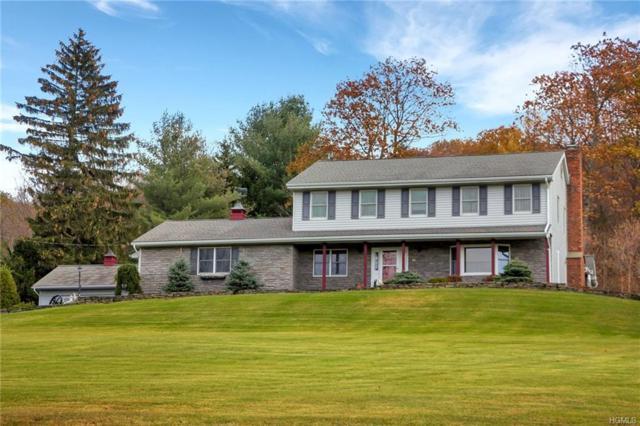 14 Sheeley Road, Grahamsville, NY 12740 (MLS #4750248) :: Mark Boyland Real Estate Team