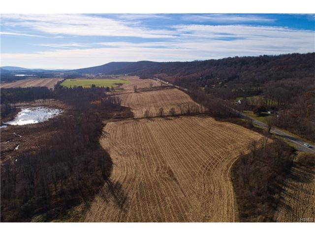 Route 22, Call Listing Agent, NY 12502 (MLS #4750311) :: Michael Edmond Team at Keller Williams NY Realty