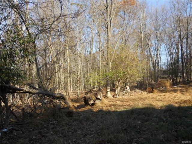 35 Woodcock Mountain Drive, Blooming Grove, NY 10914 (MLS #4750777) :: William Raveis Baer & McIntosh