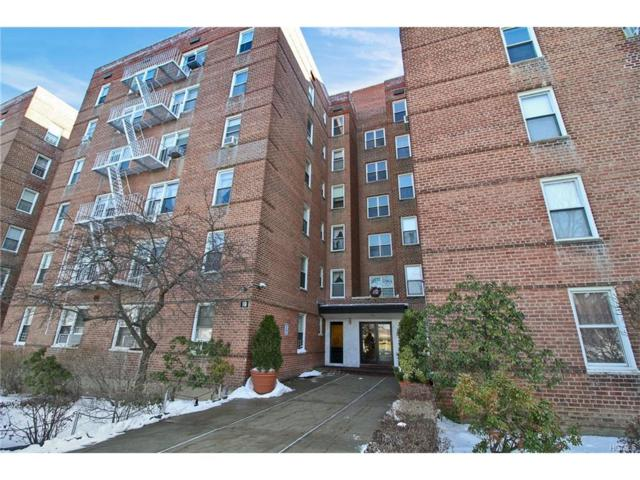 19 Abeel Street 1E, Yonkers, NY 10705 (MLS #4752380) :: William Raveis Legends Realty Group