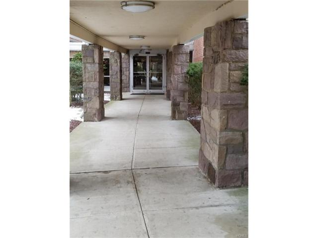 40 S Cole Avenue 1H, Spring Valley, NY 10977 (MLS #4752809) :: Mark Boyland Real Estate Team