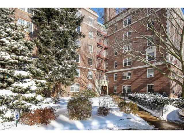 300 S Broadway 4-G, Tarrytown, NY 10591 (MLS #4800576) :: William Raveis Legends Realty Group