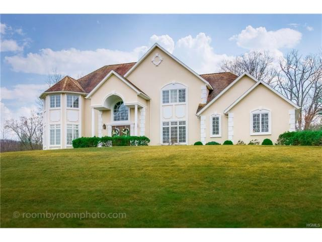 5 Alexander Drive, Tuxedo Park, NY 10987 (MLS #4801229) :: William Raveis Baer & McIntosh