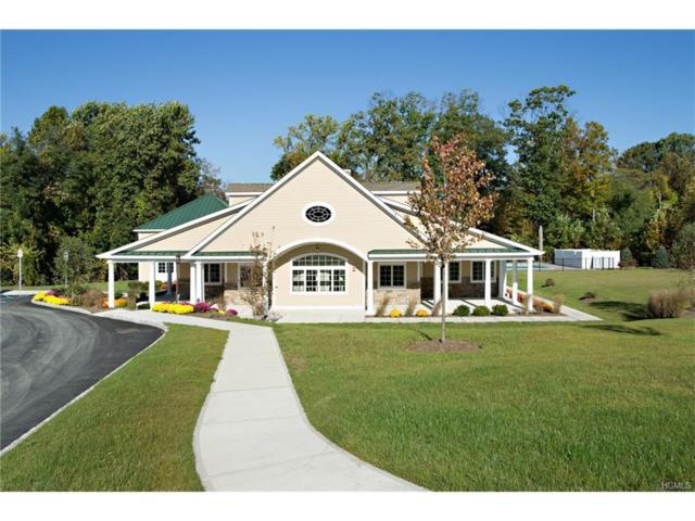 291 Hudson View Terrace, Hyde Park, NY 12538 (MLS #4801408) :: Mark Boyland Real Estate Team