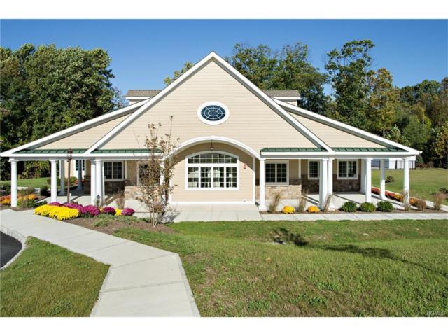 299 Hudson View Terrace, Hyde Park, NY 12538 (MLS #4801434) :: Michael Edmond Team at Keller Williams NY Realty
