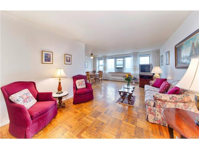 4555 Henry Hudson Parkway #1208, Bronx, NY 10471 (MLS #4801612) :: Mark Boyland Real Estate Team