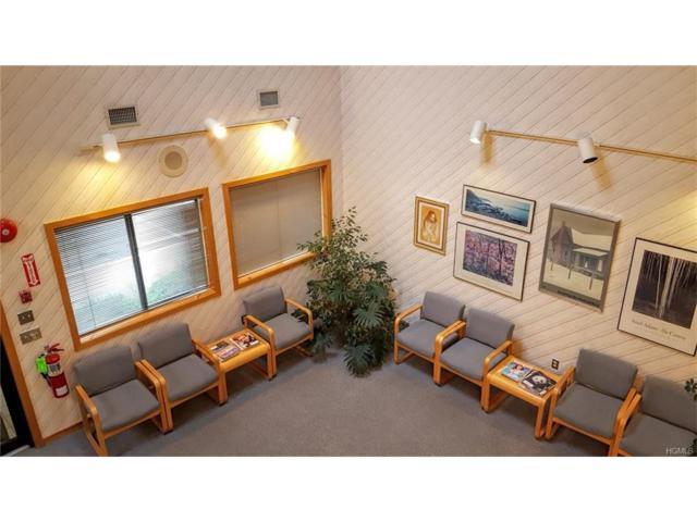 7B Medical Park Drive, Pomona, NY 10970 (MLS #4801877) :: William Raveis Baer & McIntosh