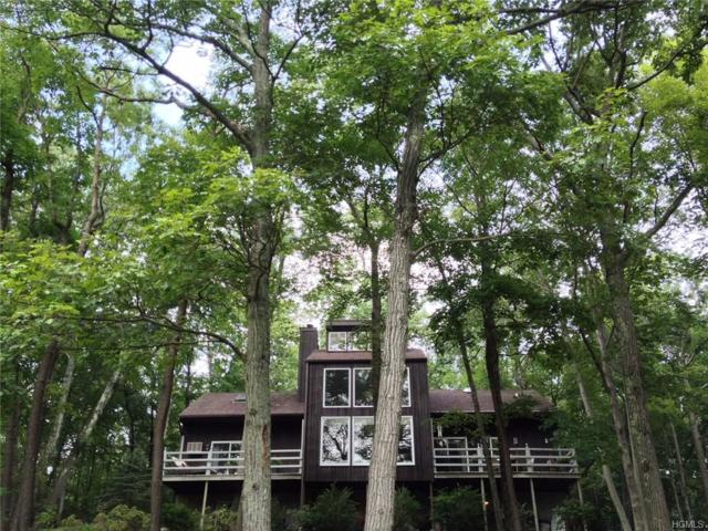 208 Smith Ridge Road, South Salem, NY 10590 (MLS #4802145) :: Mark Boyland Real Estate Team