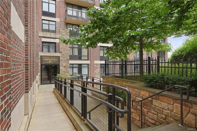 3536 Cambridge Avenue 3C, Bronx, NY 10463 (MLS #4802793) :: Mark Boyland Real Estate Team
