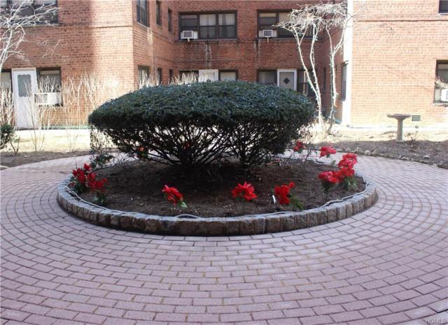 101 Ellwood Avenue 4G, Mount Vernon, NY 10552 (MLS #4803109) :: Mark Boyland Real Estate Team