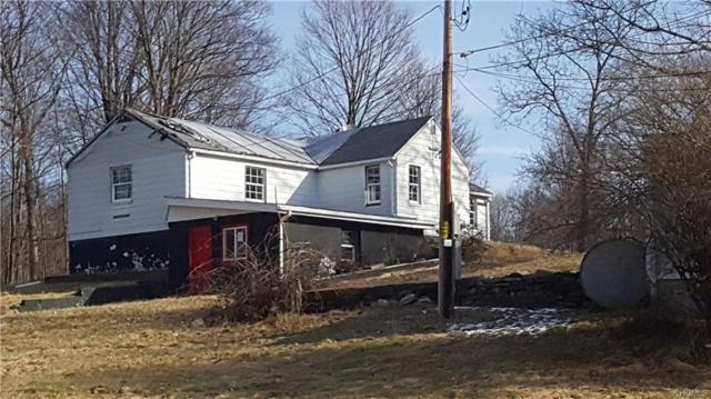 540 N Ohioville Road, New Paltz, NY 12561 (MLS #4803284) :: Mark Boyland Real Estate Team