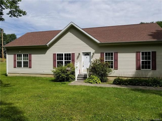 7 White Schoolhouse Road, Rhinebeck, NY 12572 (MLS #4803899) :: Stevens Realty Group