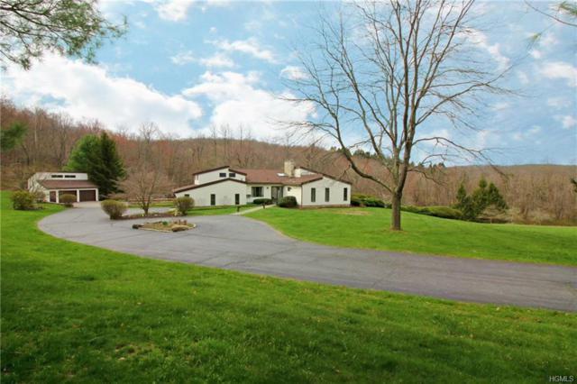 28 Strawberry Hill Road, Pawling, NY 12564 (MLS #4804168) :: Mark Boyland Real Estate Team