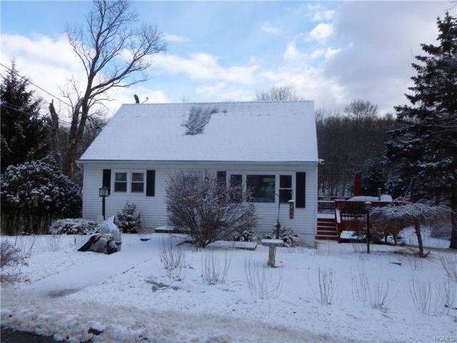 67 Pine Ridge Drive, Wappingers Falls, NY 12590 (MLS #4804324) :: Michael Edmond Team at Keller Williams NY Realty
