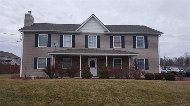 4 Marion Street, Chester, NY 10918 (MLS #4804414) :: Mark Boyland Real Estate Team