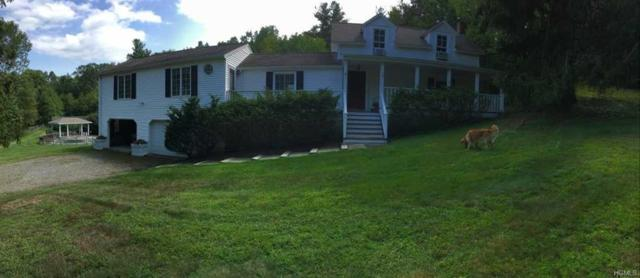 426 Tompkins Road, Copake, NY 12502 (MLS #4804942) :: William Raveis Legends Realty Group