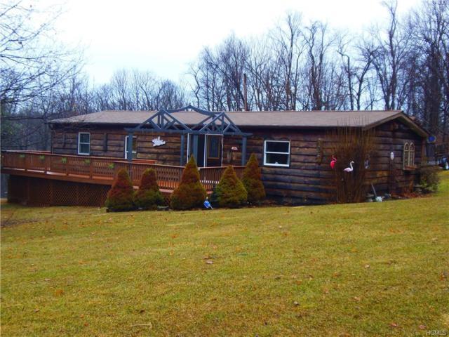 321 Plattekill Ardonia Road, Wallkill, NY 12589 (MLS #4806220) :: Mark Boyland Real Estate Team