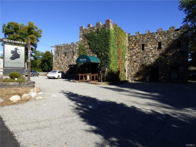 173 Haviland Drive, Brewster, NY 12563 (MLS #4806446) :: Mark Boyland Real Estate Team