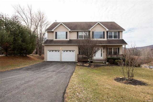 58 Mayer Drive, Highland, NY 12528 (MLS #4806578) :: Mark Boyland Real Estate Team