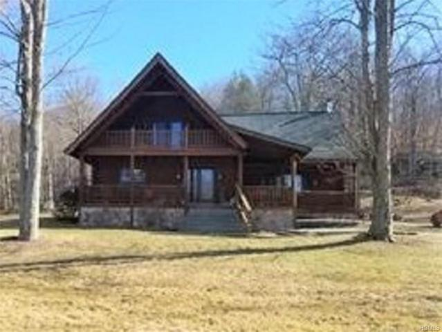 133 Wildwood Drive, Fallsburg, NY 12733 (MLS #4806698) :: Mark Boyland Real Estate Team