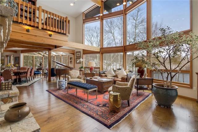 12 Nosh Kola Lane, Patterson, NY 12563 (MLS #4806712) :: Mark Boyland Real Estate Team