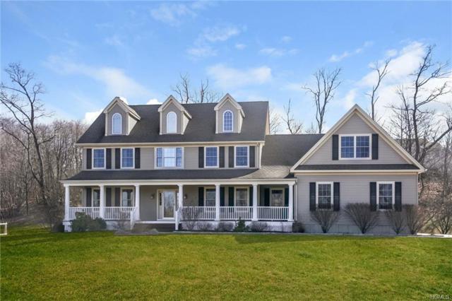 27 Breezy Hill Drive, Wingdale, NY 12594 (MLS #4806969) :: Mark Boyland Real Estate Team