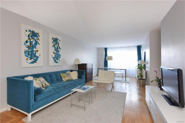 4525 Henry Hudson Parkway #511, Bronx, NY 10471 (MLS #4807025) :: Mark Boyland Real Estate Team