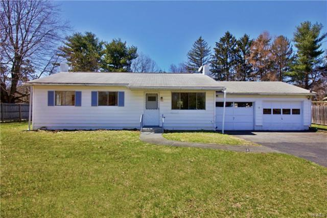 17 Nine Partners Drive, Pine Plains, NY 12567 (MLS #4807312) :: Michael Edmond Team at Keller Williams NY Realty