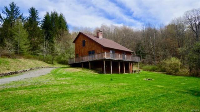 120 Alder Creek Road, Livingston Manor, NY 12758 (MLS #4810142) :: Stevens Realty Group