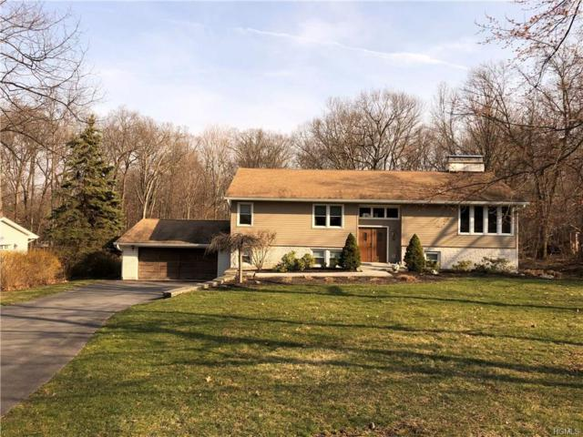 32 Mountain Pass Road, Hopewell Junction, NY 12533 (MLS #4812509) :: Mark Boyland Real Estate Team