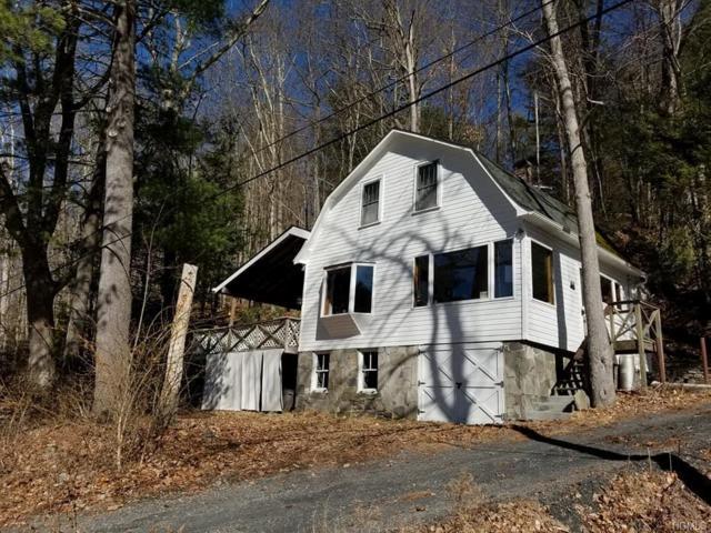 1196 State Route 97, Pond Eddy, NY 12780 (MLS #4813014) :: Mark Boyland Real Estate Team