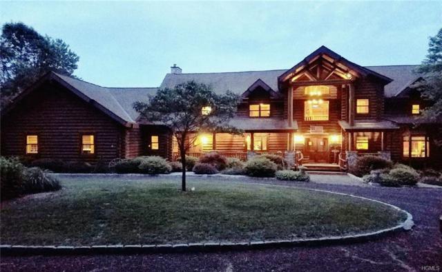 111 Bretti Lane, Dover Plains, NY 12522 (MLS #4813979) :: Mark Boyland Real Estate Team