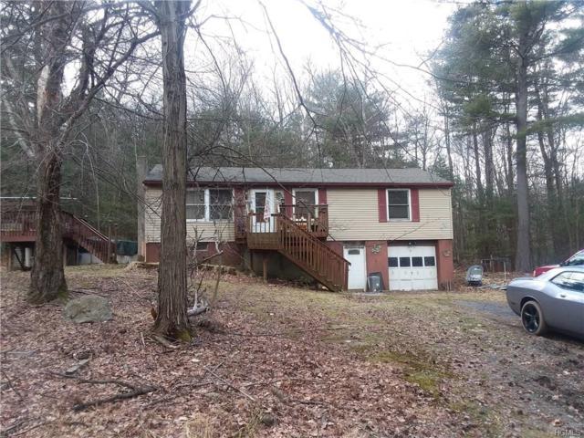 10 Pennington, Huguenot, NY 12746 (MLS #4815007) :: Mark Boyland Real Estate Team