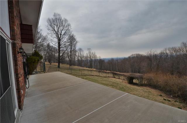 497 Mountain Road, Bloomingburg, NY 12721 (MLS #4815034) :: Mark Boyland Real Estate Team