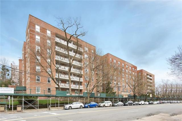 5601 Riverdale Avenue 2B, Bronx, NY 10471 (MLS #4815085) :: William Raveis Legends Realty Group