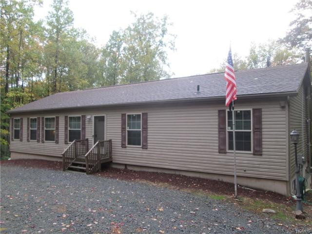 223 Lackawack Hill Road, Napanoch, NY 12458 (MLS #4815690) :: Mark Boyland Real Estate Team