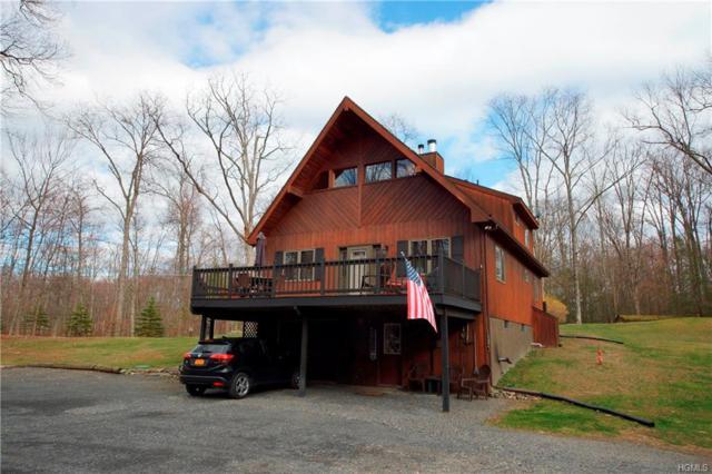 365 Winding Hill Road, Montgomery, NY 12549 (MLS #4815842) :: Mark Boyland Real Estate Team