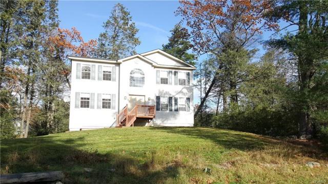 283 Old Sackett Road, Rock Hill, NY 12775 (MLS #4816177) :: Mark Boyland Real Estate Team