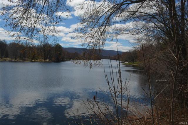 23 Lakeside Drive, New Windsor, NY 12553 (MLS #4816180) :: Mark Seiden Real Estate Team