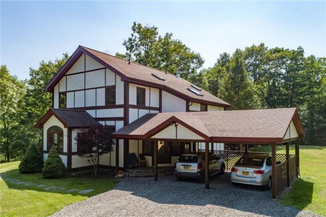 3 Hillman Road, Woodstock, NY 12498 (MLS #4816291) :: Mark Seiden Real Estate Team