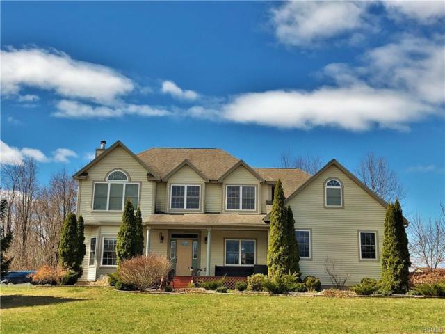 12 Empire Drive, Wallkill, NY 12589 (MLS #4816376) :: Mark Boyland Real Estate Team