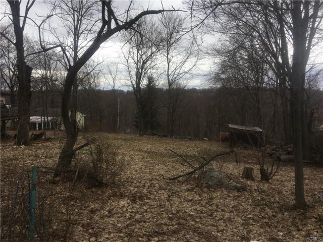 Cedar Tr. Trail, Blooming Grove, NY 10914 (MLS #4816649) :: Mark Seiden Real Estate Team