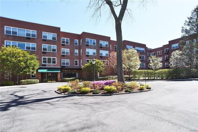 1299 Palmer Avenue #228, Larchmont, NY 10538 (MLS #4818235) :: William Raveis Legends Realty Group