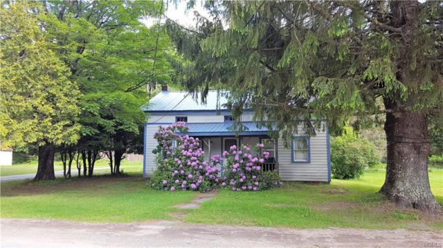 1462 Denning Road, Claryville, NY 12725 (MLS #4818338) :: Stevens Realty Group