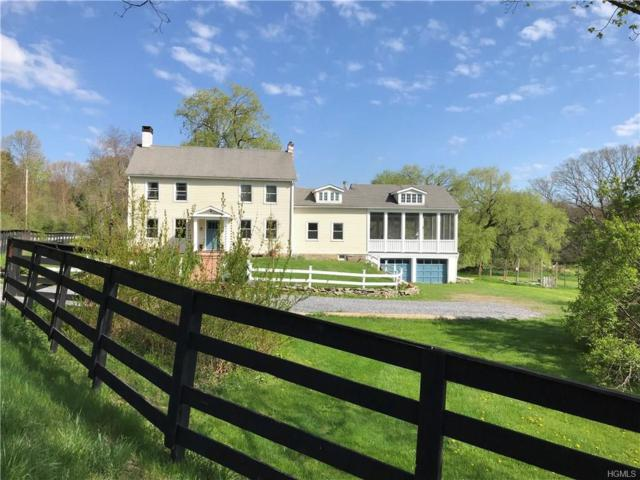 260 Schoolhouse Road, Staatsburg, NY 12580 (MLS #4819756) :: William Raveis Legends Realty Group