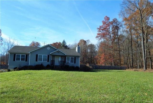 388 Greenville Turnpike, Middletown, NY 10940 (MLS #4819820) :: Mark Seiden Real Estate Team