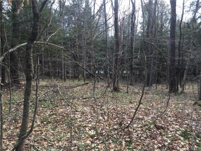 10 Cold Creek Pass, Parksville, NY 12754 (MLS #4819974) :: Shares of New York